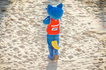 FIVB Beach Volleyball World Championships 2017 presented by A1 14016203