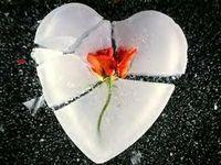 Gruppenavatar von FORGET me not, FORGET me never, but when you FORGET me............................... FORGET me forever !!!