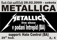 Metallica Live Show