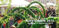Aufsteirern