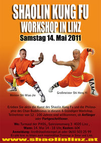 Shaolin Kung Fu Workshop in Linz