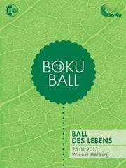 Boku Ball 2013