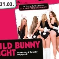 Wild Bunny Night