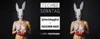 Techno Sonntag Geburtstagsfest + Falscher Hase