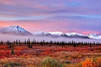 Alaska - Live Reportage von Bernd Römmelt