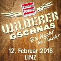 Wilderer Gschnas 2018