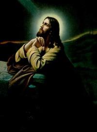 DA JESUS UND SEINE HAWARA