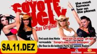 Coyote Ugly - Das Original