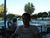 Steve_RS4
